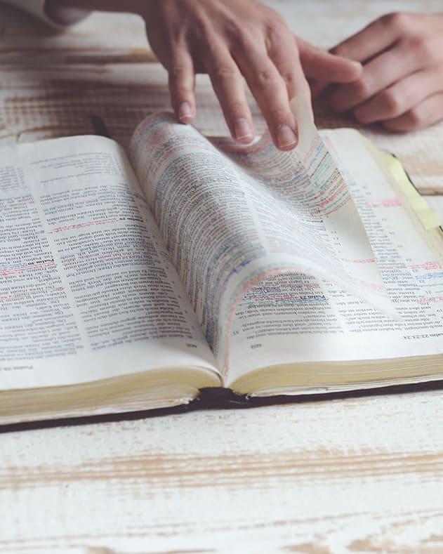 Conociendo la Doctrina 1